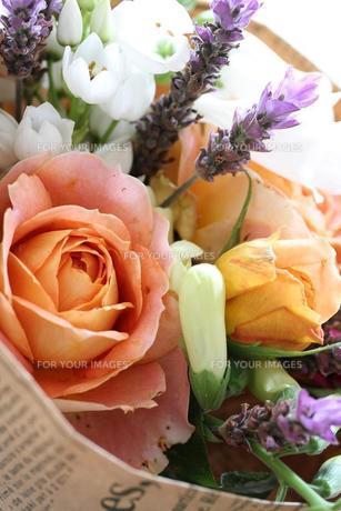 バラ キャラメルアンティーク花束の写真素材 [FYI00382258]