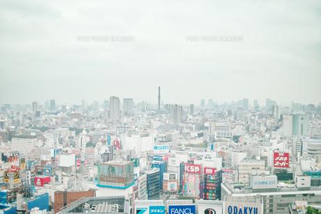 白い新宿の写真素材 [FYI00382288]