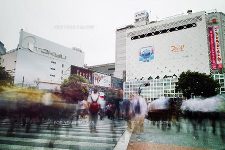 渋谷のスクランブル交差点の素材 [FYI00382293]