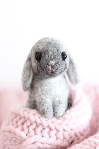 ウサギのかくれんぼ 2011干支の写真素材 [FYI00382296]