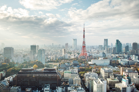 東京、芝公園の写真素材 [FYI00382301]
