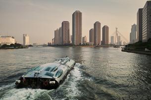 隅田川を下る水上バスの写真素材 [FYI00382308]