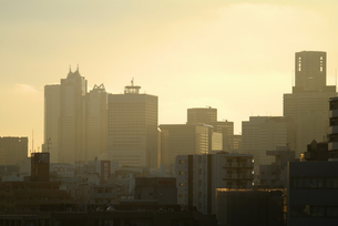 茜色に染まる新宿の写真素材 [FYI00382366]