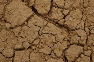 地割れの写真素材 [FYI00382570]