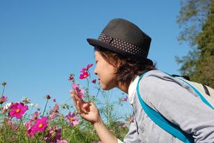 コスモス畑でお花にキスしようとする女性の写真素材 [FYI00382679]