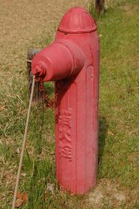 消火栓の写真素材 [FYI00382758]