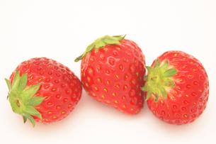 3粒のイチゴの素材 [FYI00382794]