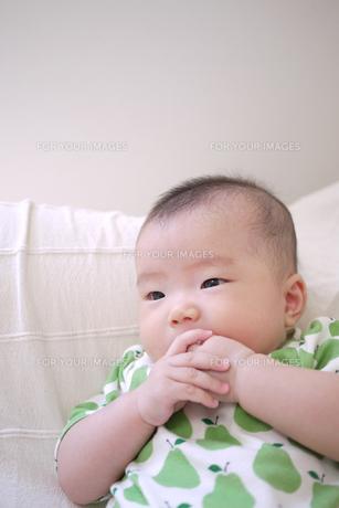 赤ちゃんの写真素材 [FYI00382799]