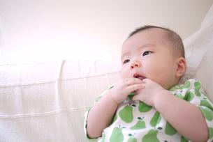 赤ちゃんの写真素材 [FYI00382800]