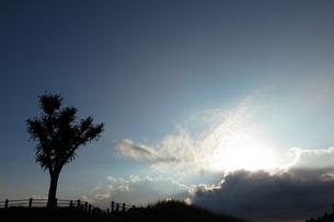 新しい空の写真素材 [FYI00382861]