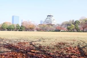 大阪城公園の写真素材 [FYI00382898]