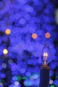 クリスマスイルミネーションの写真素材 [FYI00383116]