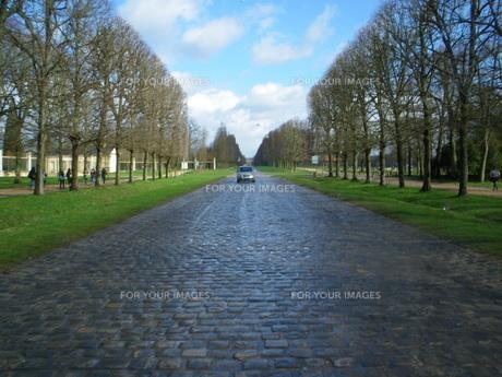 ヴェルサイユ宮殿の庭園の道の写真素材 [FYI00383139]