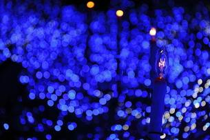 クリスマスイルミネーションの写真素材 [FYI00383143]