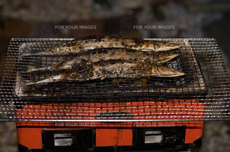 炭火、秋刀魚の塩焼きの写真素材 [FYI00383232]