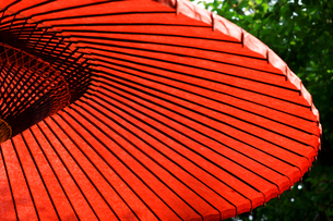 野点傘の素材 [FYI00383267]