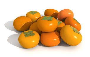 たくさんの柿の写真素材 [FYI00383384]