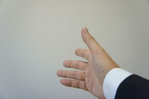 握手の素材 [FYI00384477]