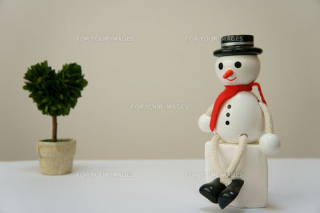 観葉植物でリラックス 雪だるまの素材 [FYI00384515]