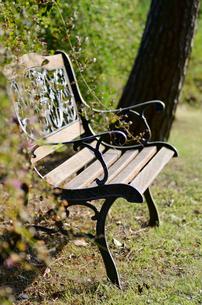 公園のベンチの素材 [FYI00385078]