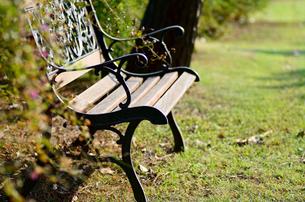 公園のベンチの素材 [FYI00385085]