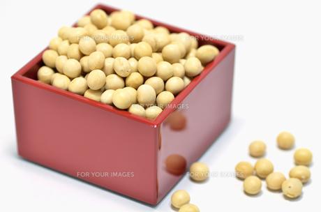 節分 升と大豆の素材 [FYI00385169]