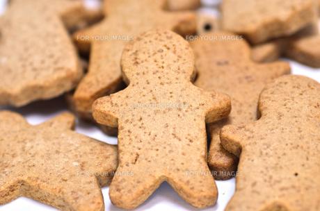 ジンジャークッキーの素材 [FYI00385213]