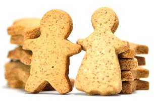 ジンジャークッキーの素材 [FYI00385219]