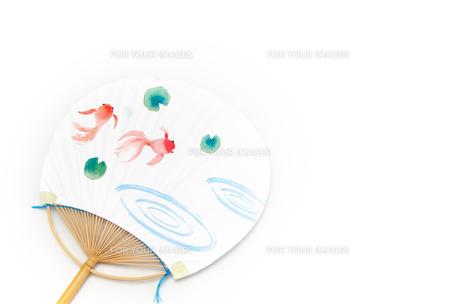 団扇 金魚の素材 [FYI00386175]