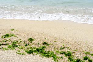 砂浜 波打ち際 海藻の素材 [FYI00386199]