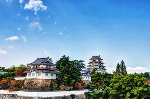 福山城 二の丸南側の石垣の素材 [FYI00386390]