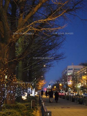 クリスマスの日本大通りの素材 [FYI00387295]