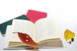 読書の秋の写真素材 [FYI00387596]