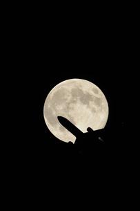 満月と飛行機の素材 [FYI00388443]