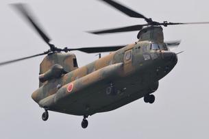 CH-47J輸送ヘリコプターの写真素材 [FYI00388464]