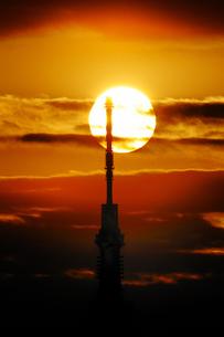 夕日とスカイツリーの素材 [FYI00388722]