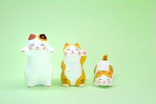猫の人形の写真素材 [FYI00389201]