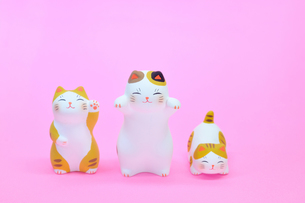 ネコの人形の写真素材 [FYI00389228]