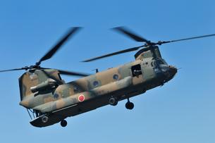 輸送ヘリCH-47Jの写真素材 [FYI00389369]