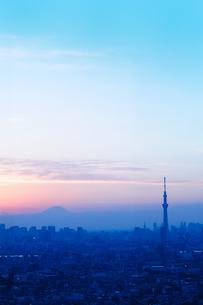 市川から見るスカイツリーと富士山の写真素材 [FYI00389650]