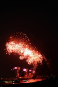 市川市民納涼花火大会の写真素材 [FYI00391356]