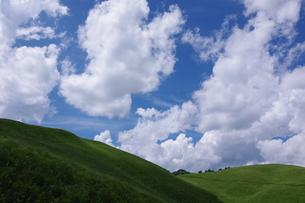 夏雲と丘の写真素材 [FYI00391965]