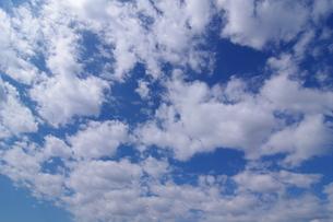 青空と9月の雲の素材 [FYI00391998]