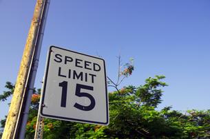 交通標識(アメリカ)の写真素材 [FYI00392188]