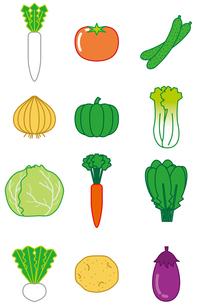 野菜の写真素材 [FYI00392300]