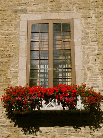 窓の写真素材 [FYI00392801]