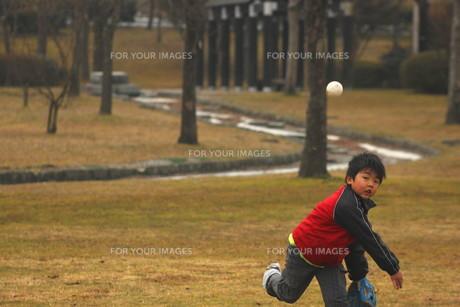男の子の写真素材 [FYI00393008]