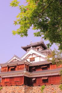 福知山城の素材 [FYI00393086]