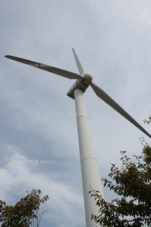 風力発電の素材 [FYI00393161]