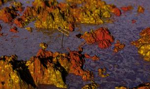 錆びた海の写真素材 [FYI00393363]